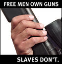 free_men_own_guns_slaves_dont.jpg